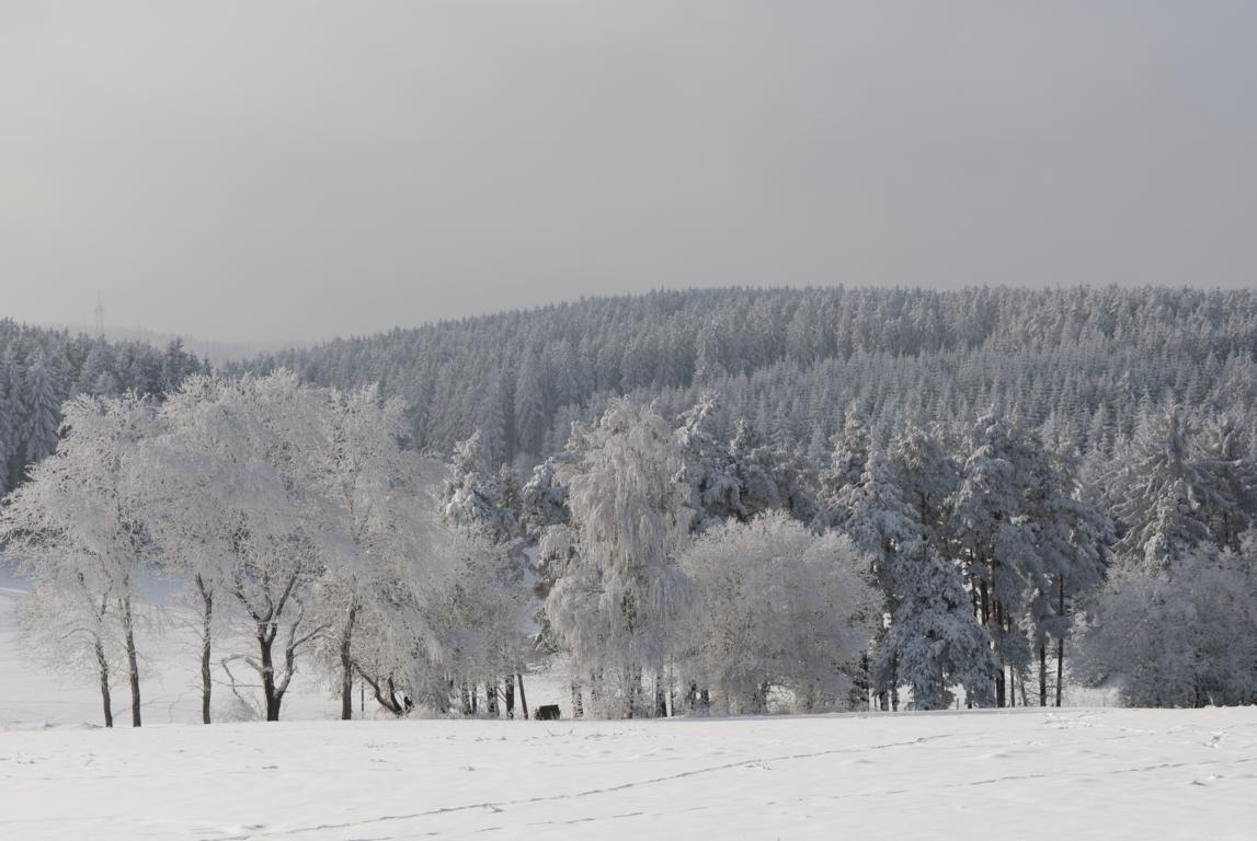 Frost und klarer Himmel