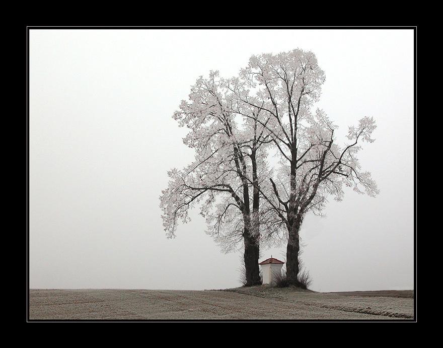 Frost x Nebel = ?