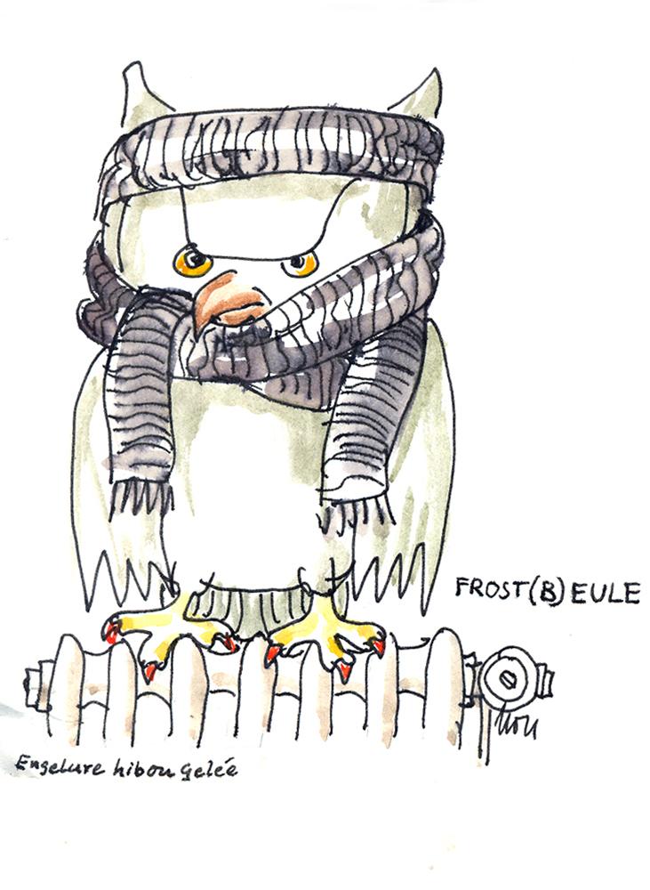 Frostb-Eule