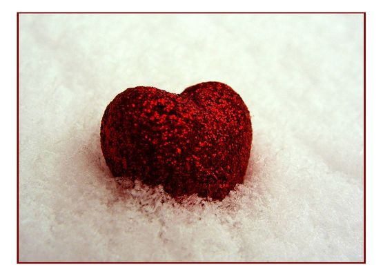 *frosted - love*