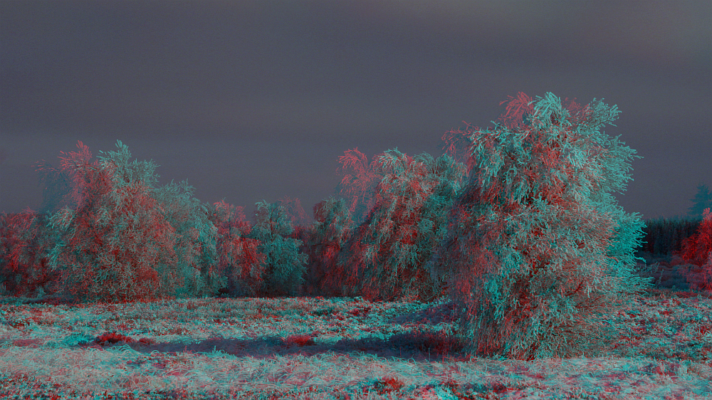 Frostig (3D Bild)