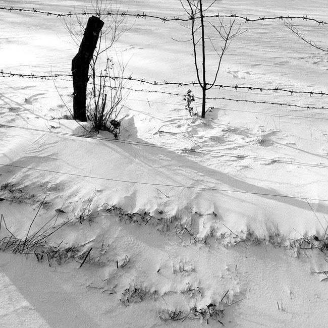 Frostige Fotos #4