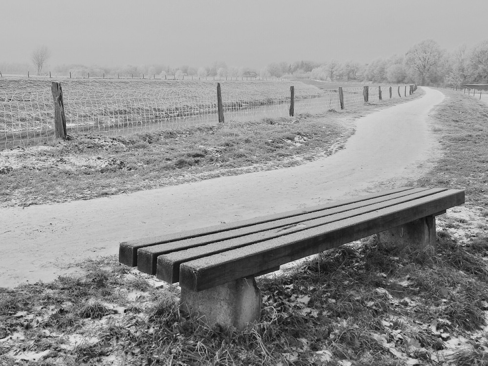 Frostige Sitzgelegenheit