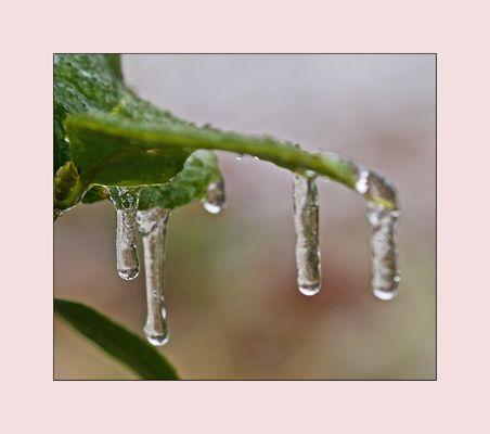 Frostige Zeiten 4
