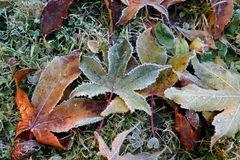 Frostige Zeiten ...