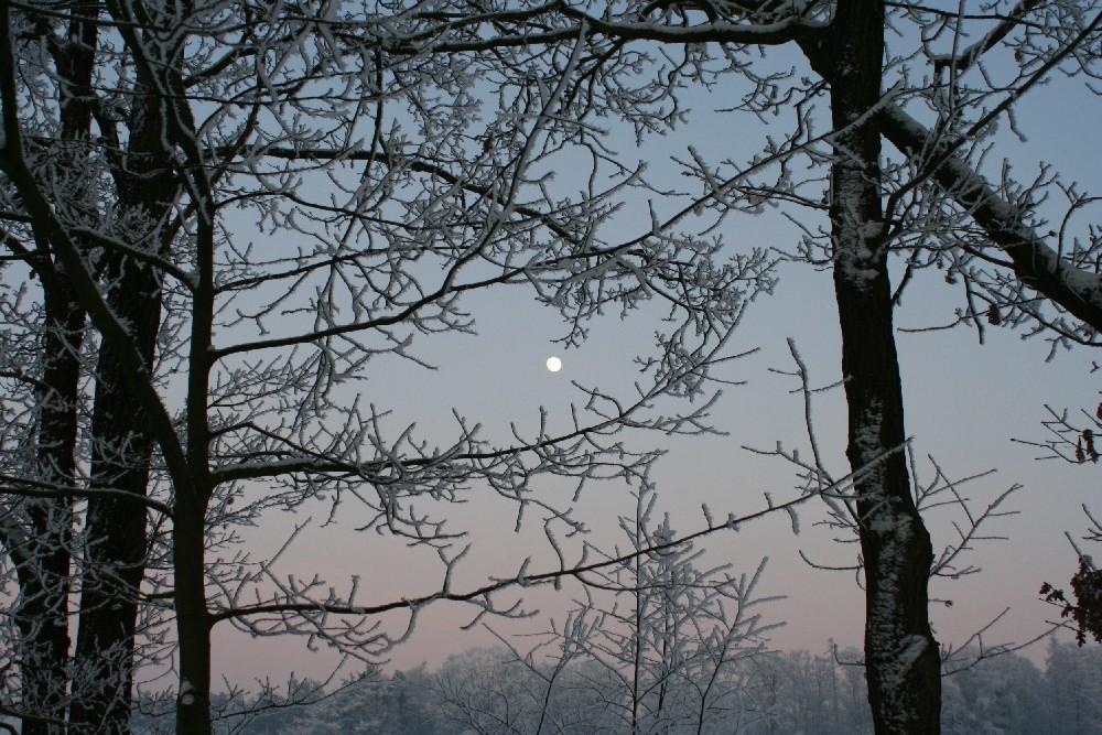 frostiger Mond