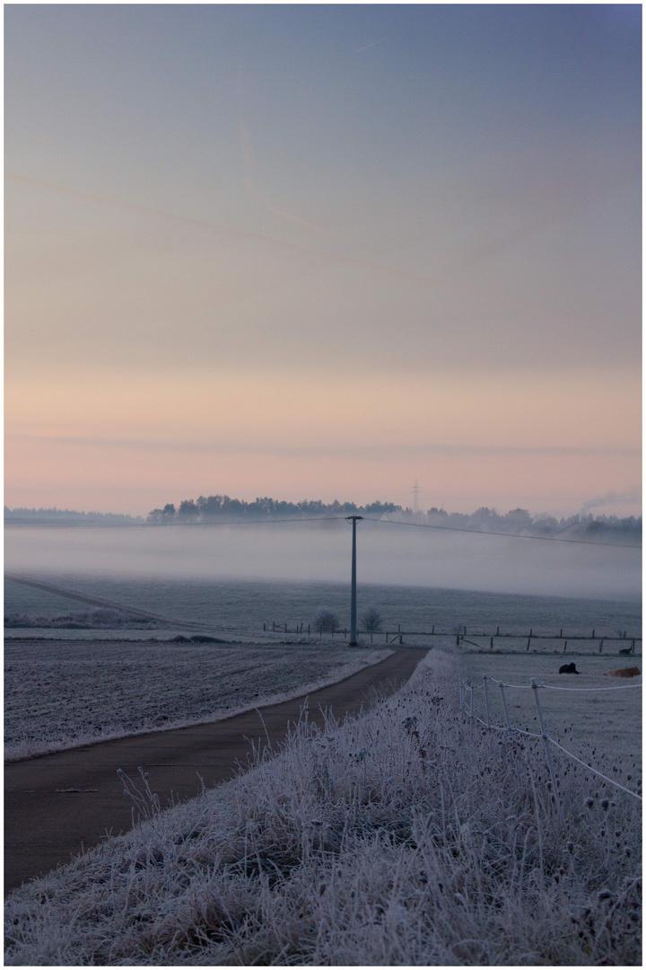 Frostiger Morgen 1