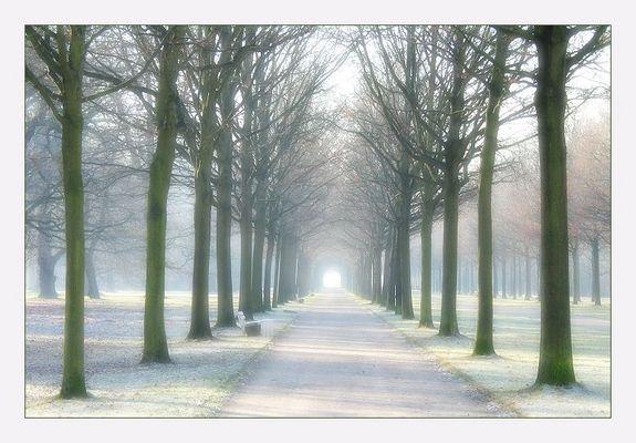 frostiger Morgen ...