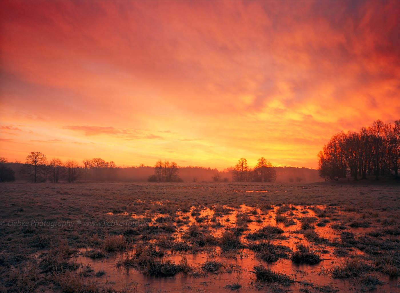 Frostiger Morgen, Havelwiesen Neuholland; Oberhavel
