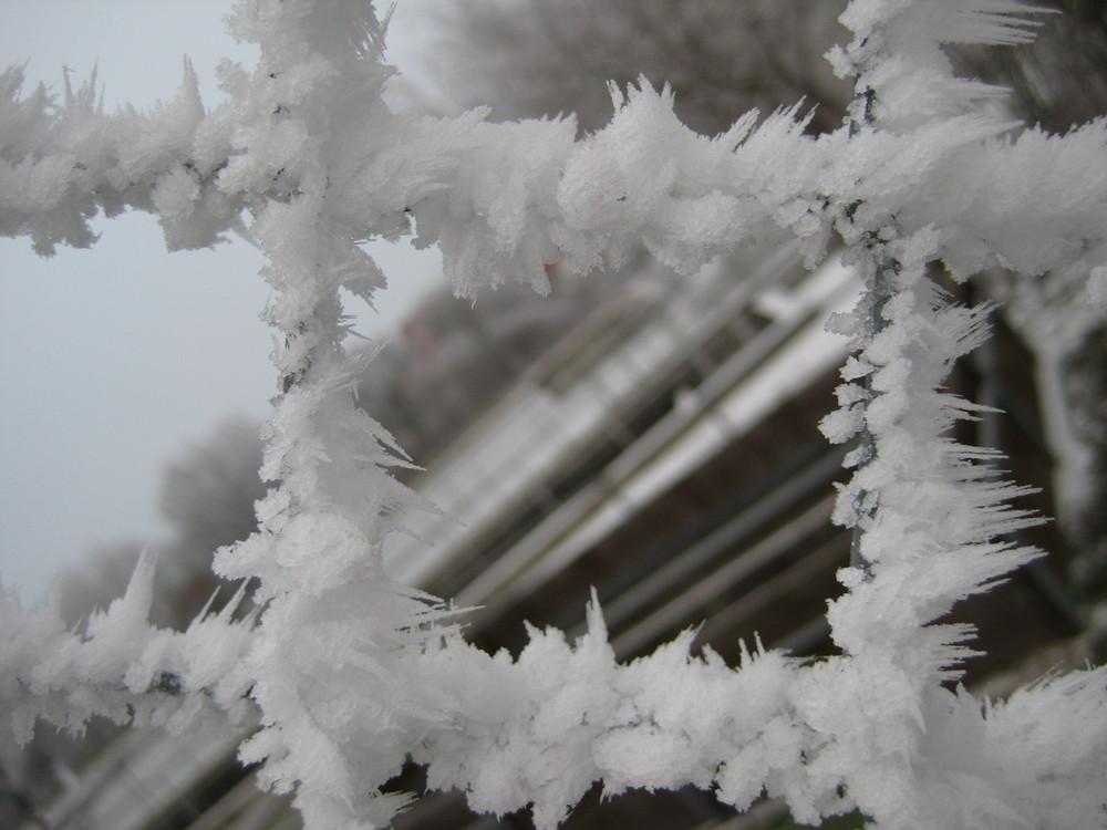 Frostiger Zaun