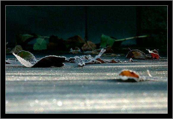 Frostiges Ende