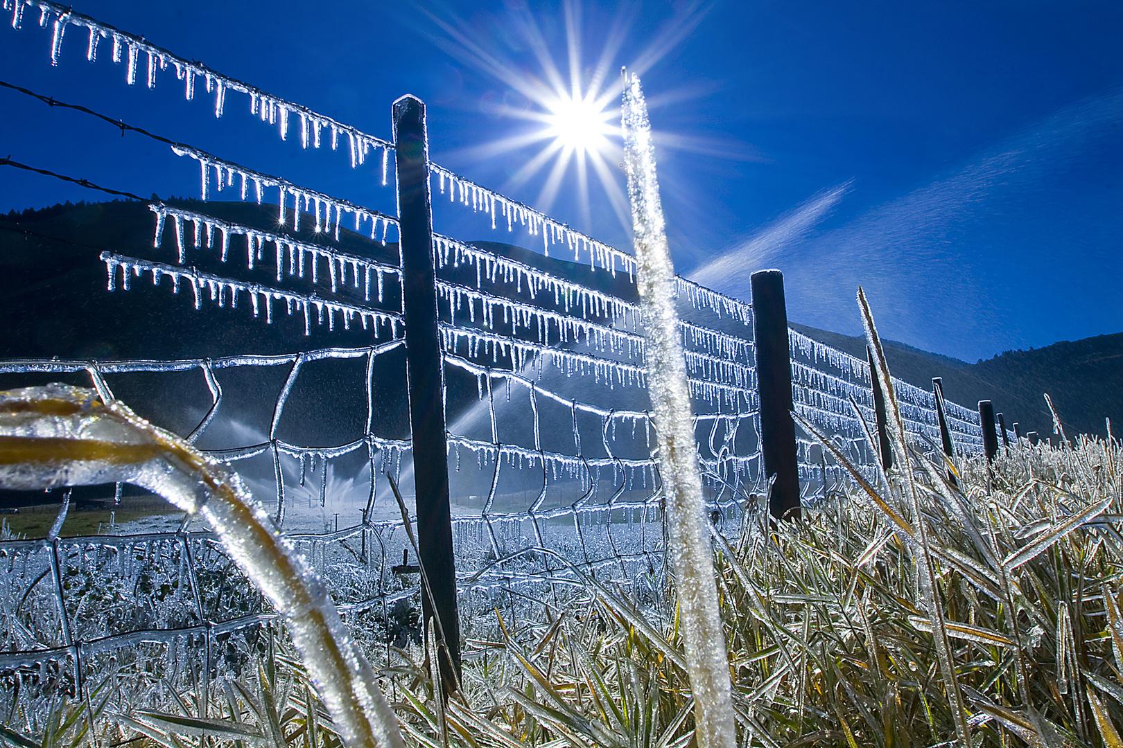 Frostiges Rasensprengen