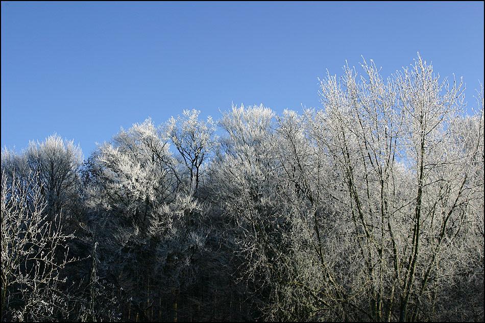 Frostigezeiten