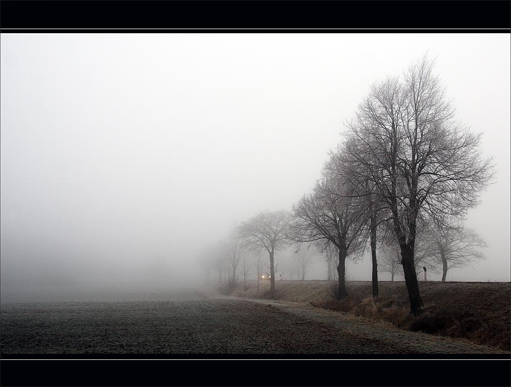 Frostimpressionen 9