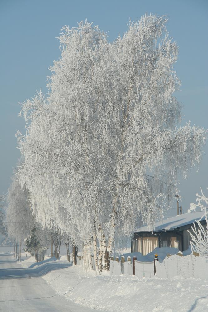 Frostmantel