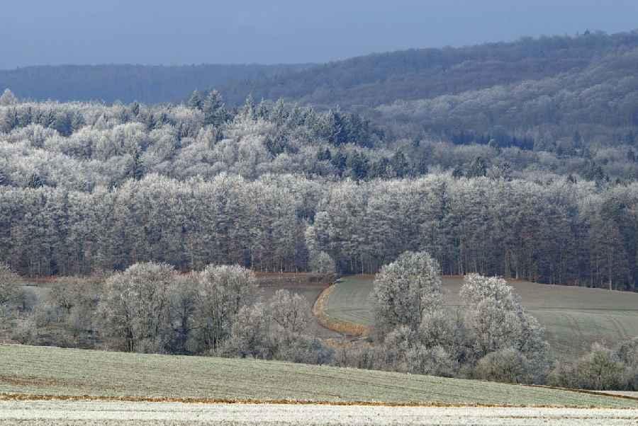 Frostnächte