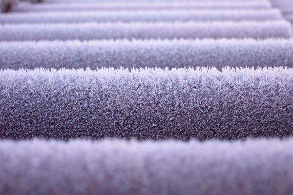 Frostwellen