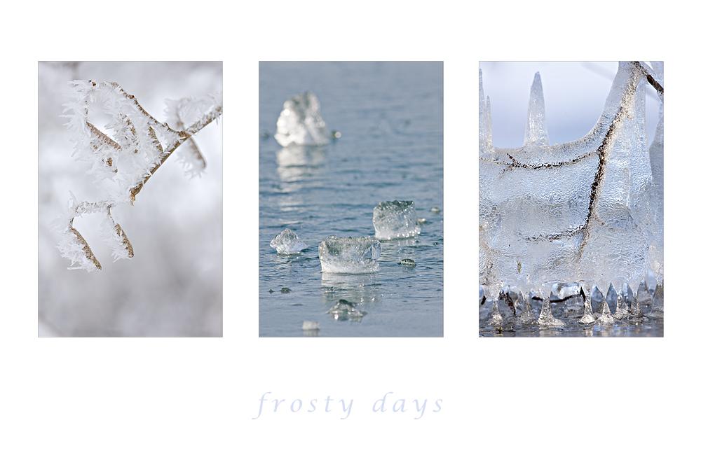 frosty days