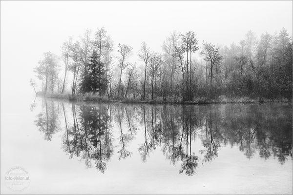 -- frosty morning --