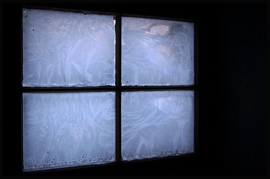 -frozen-