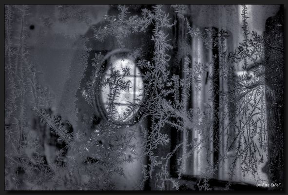 --frozen--