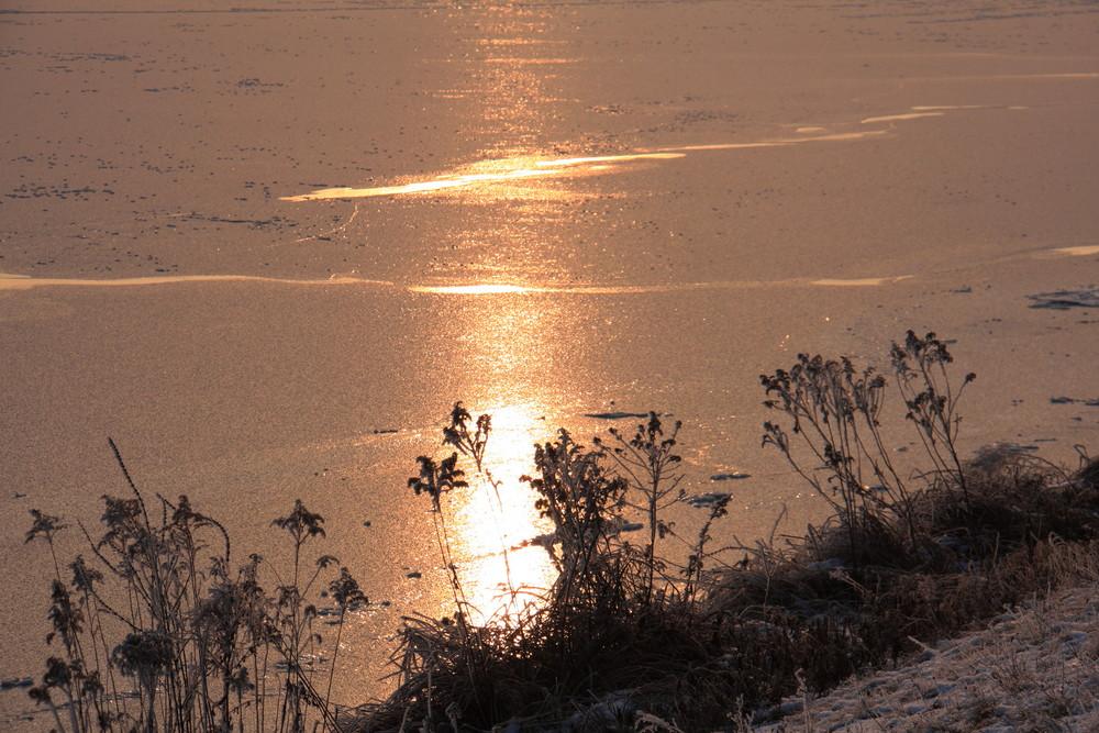 frozen Donau