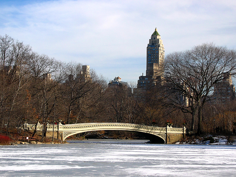 Frozen lake in Central Park