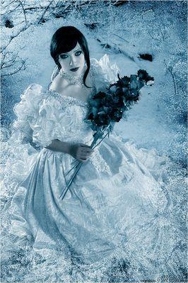 ~ frozen roses ~