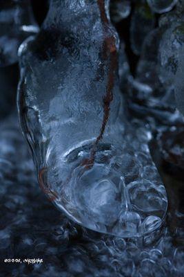 Frozen Shoe!