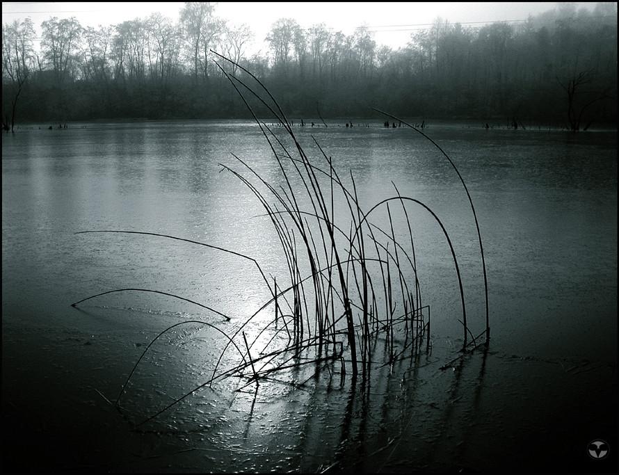 frozen water II.
