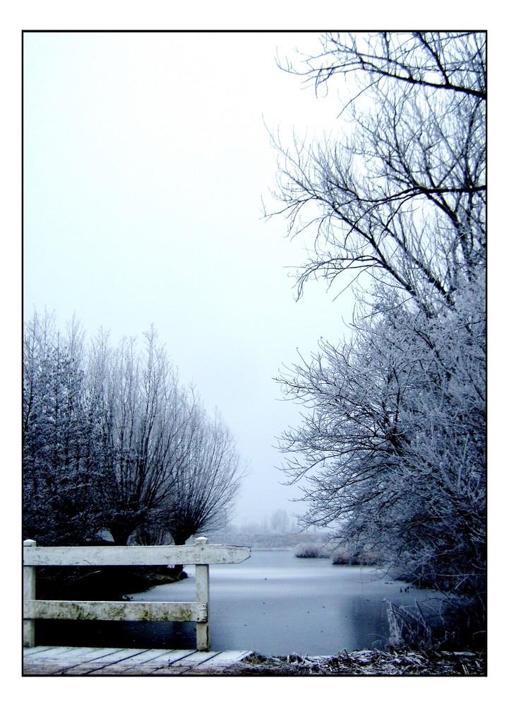 Frozen 'World