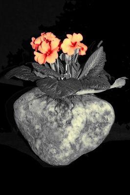 Fruchtbarer Stein