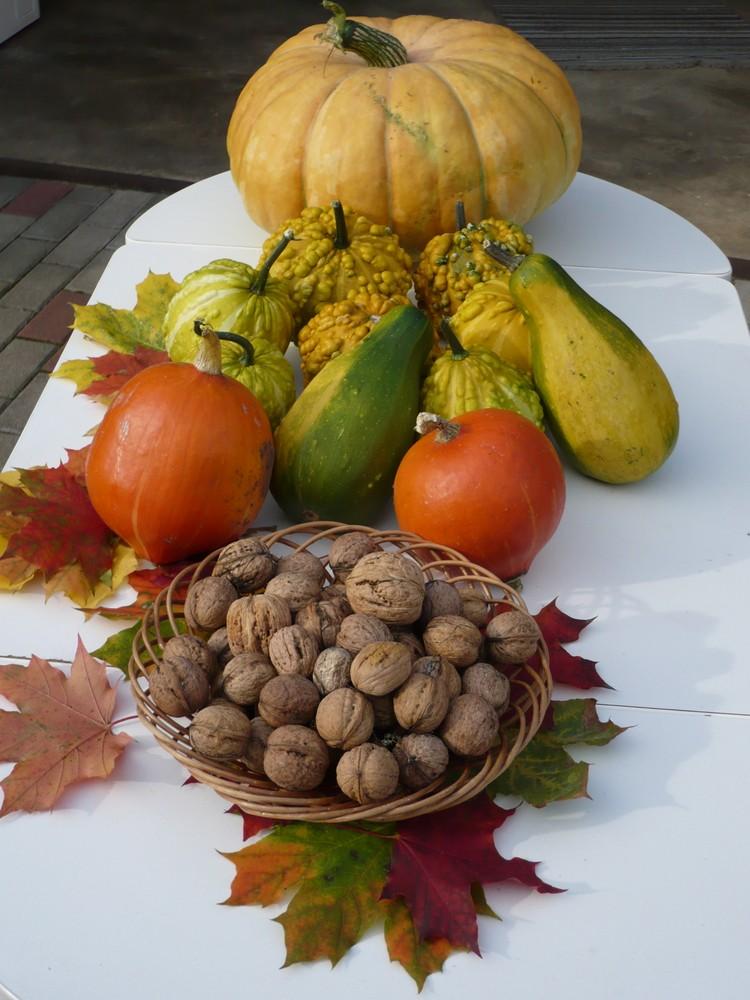 Früchte des Herbstes- Lohn der Mühe