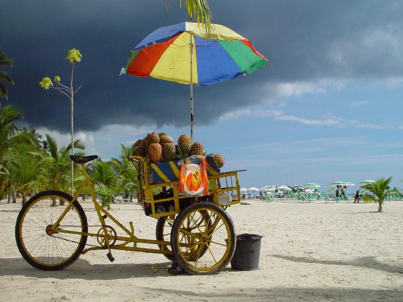 Früchte unterwegs am Strand
