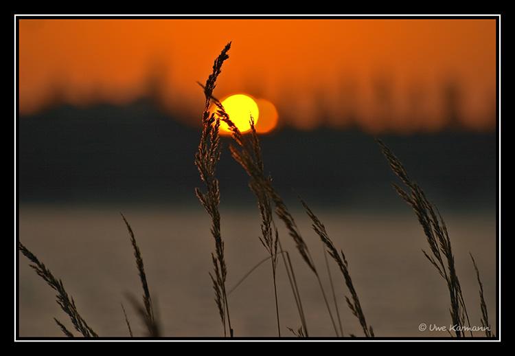 ...früh am Morgen... (01446)