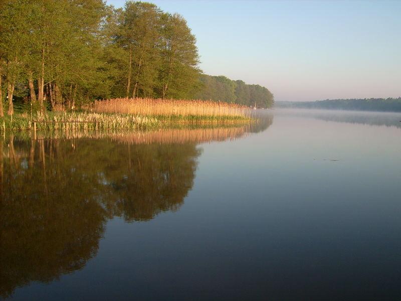 früh am Wentowsee....