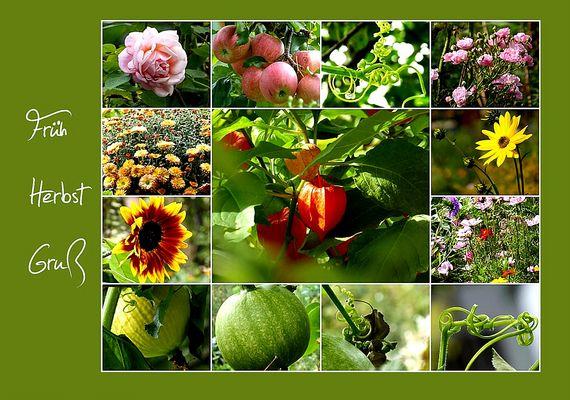 Früh-Herbst-Gruß