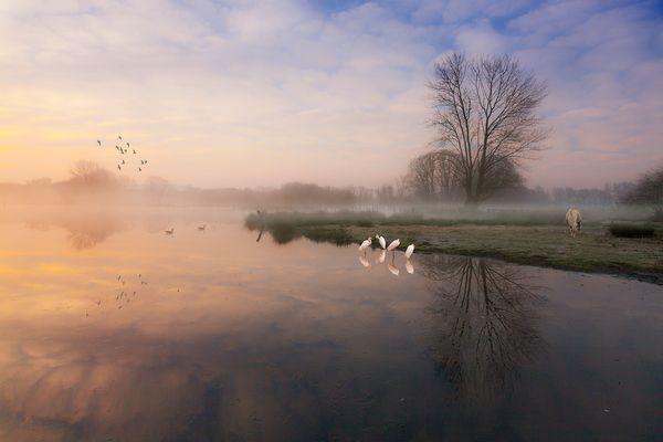 Früh morgens am See
