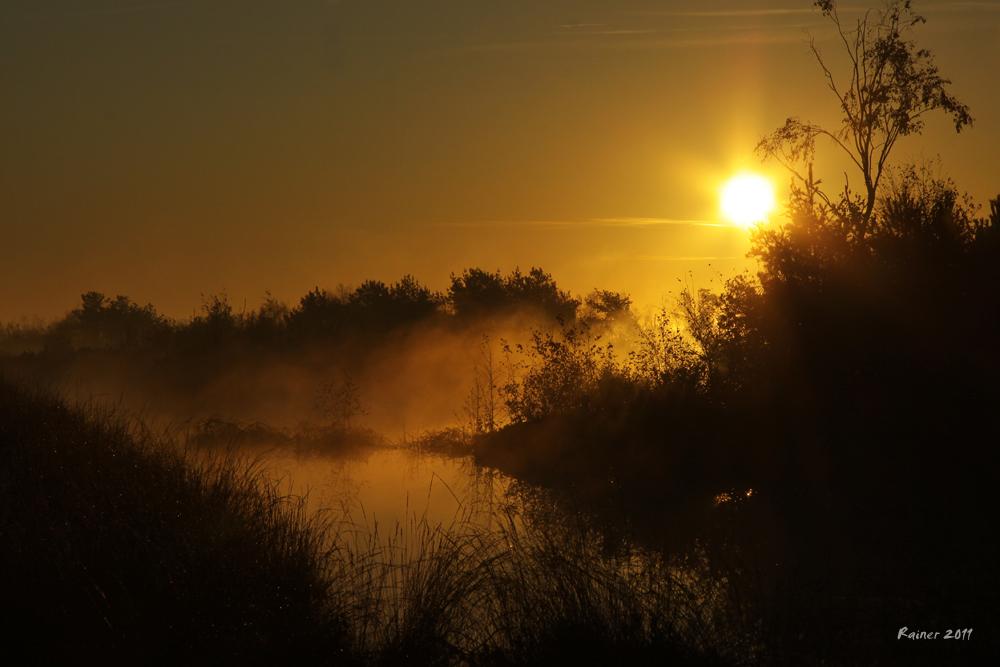 Früh Morgens - beim herbstlichen Angeln auf Hecht ...