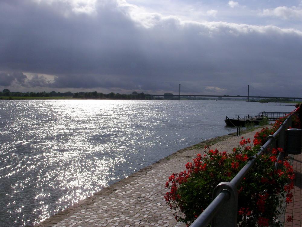 Früher Herbst am Rhein