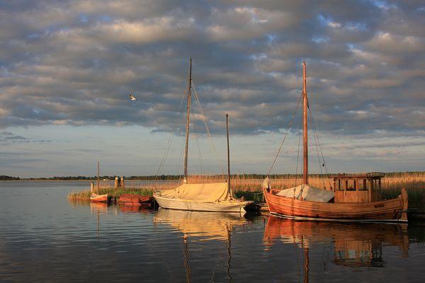 Früher Morgen im Hafen von Wieck