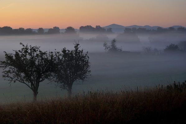 Früher Nebel