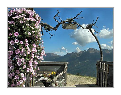 Frühherbst auf der Schwemmalm / Ultental Südtirol