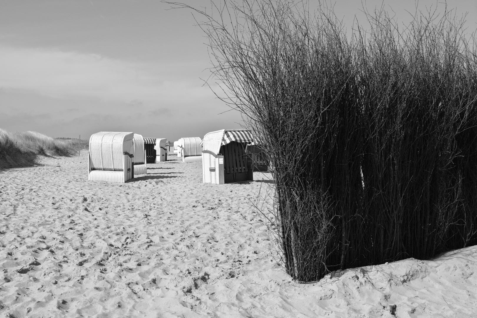 Frühjahr am Strand