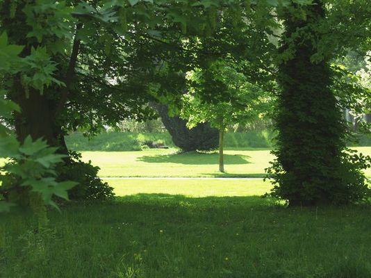 Frühjahrsstimmung im Park