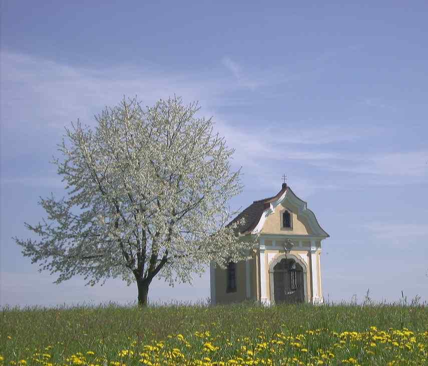 Frühling 2007