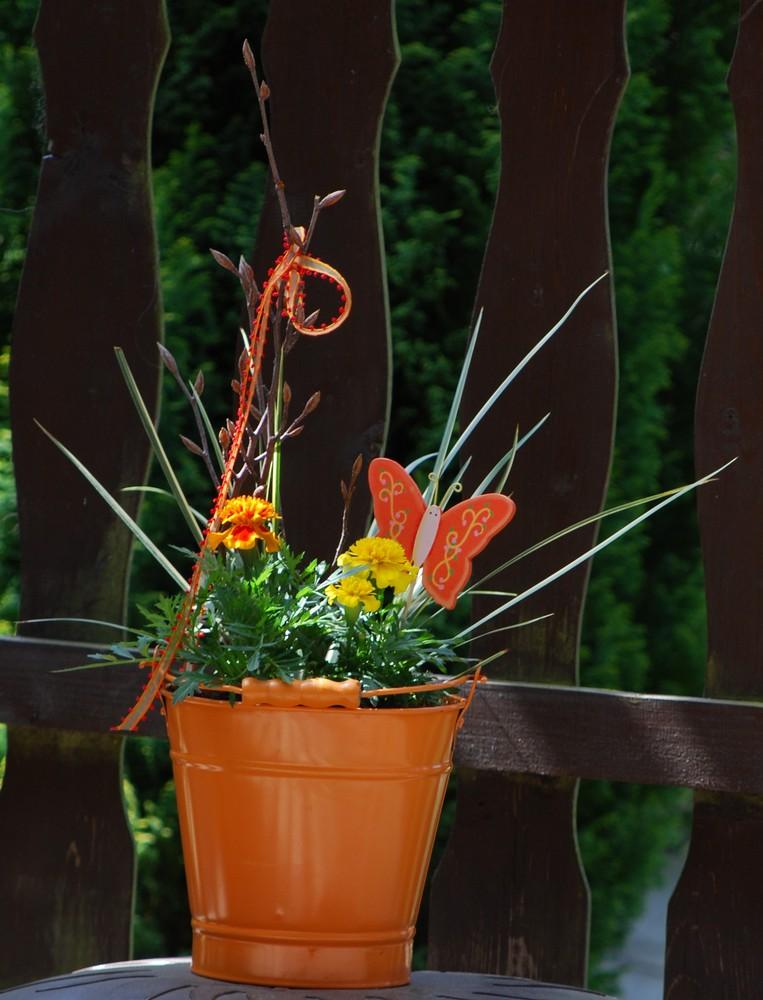Frühling 2009 1