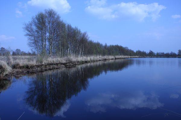 """Frühling am """"Ewigen Meer"""""""