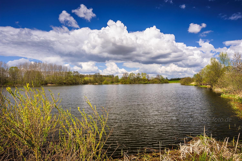 Frühling am Mühlensee