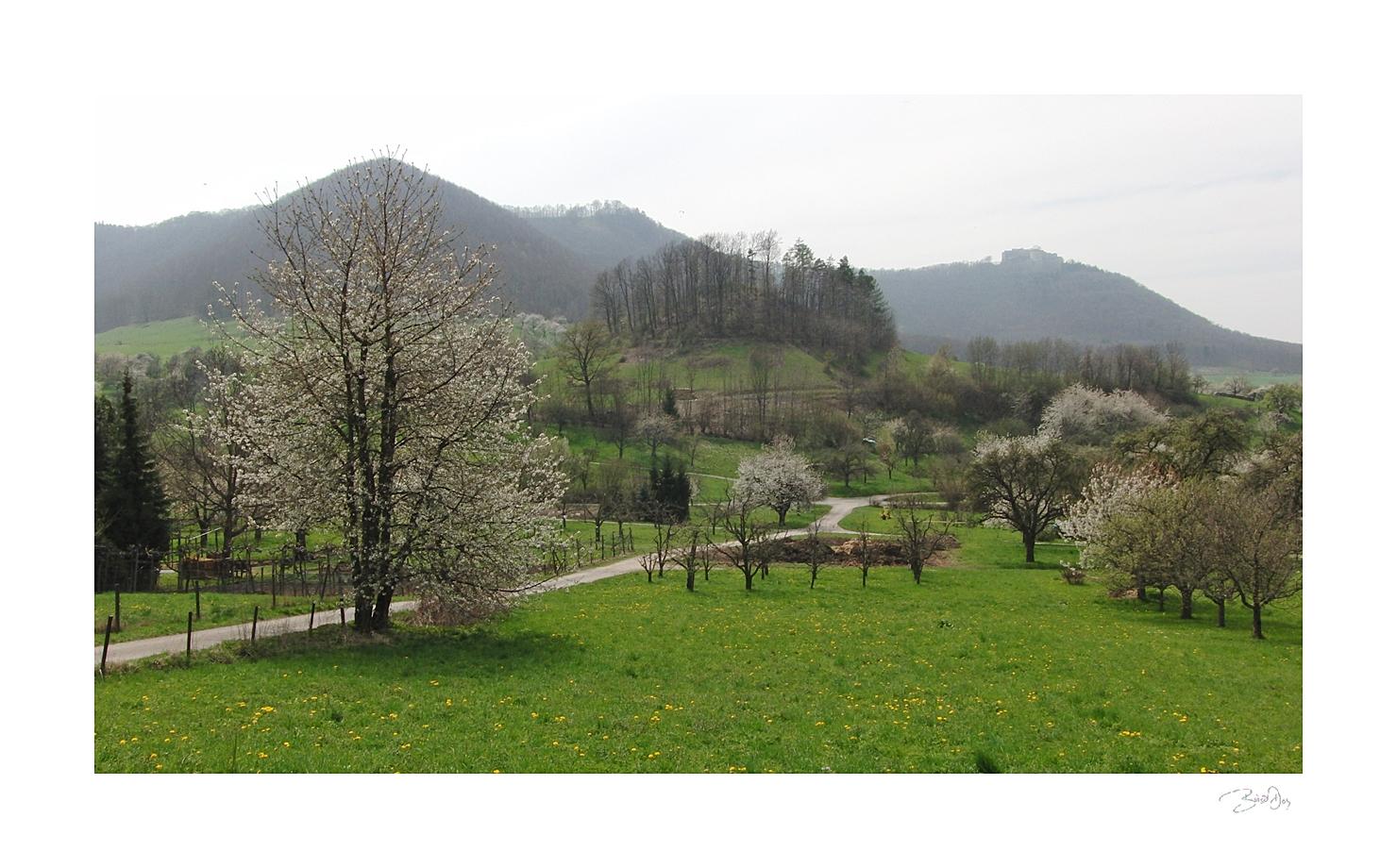 Frühling am Rande der Schwäbischen Alb